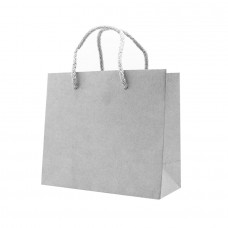 Paper Bag Kraft 140g Silver - Pack 25 unt